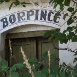 Borospince